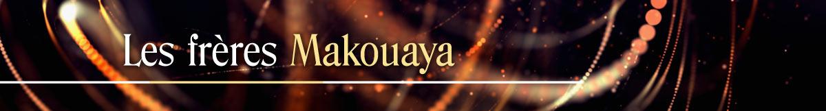 Concerts et spectacles des Frères Makouaya, musiciens, conteurs & luthiers. Concerts des Frères Makouaya. Spectacles des Frères Makouaya. Christian et Amour Makouaya en concert. Musique & Contes